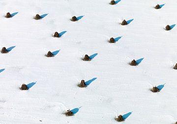 Ruiters in Sneeuw van Sky Pictures Fotografie