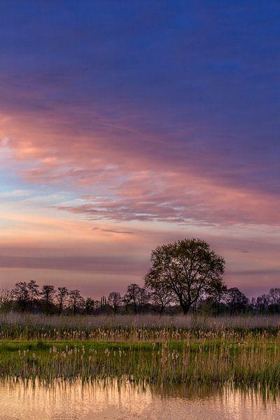 Purple Sunset van Joram Janssen