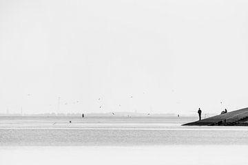 stilte van Petra Slingenberg