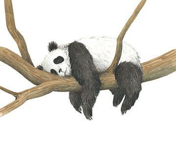 Panda von Marieke Nelissen