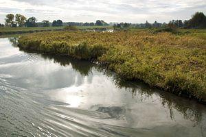 Landschap langs rivier de Linge