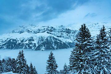 Mist in een dal in de Zwitserse Alpen van