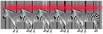Laserstraal op een Zebra Barcode van Monika Jüngling