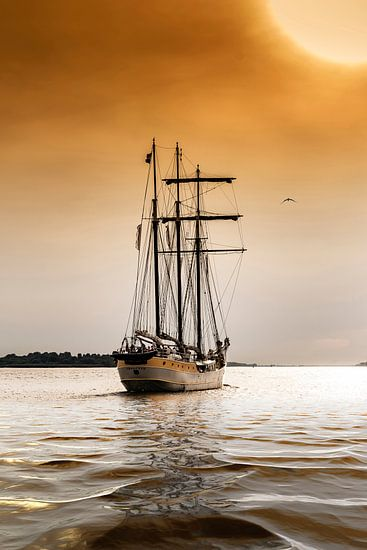 Sunset sailing Hamburg van Alexander Schulz