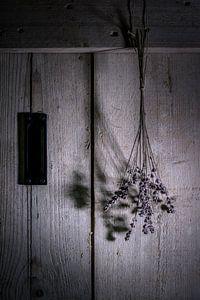 Stillleben mit Lavendel von Ellen Gerrits