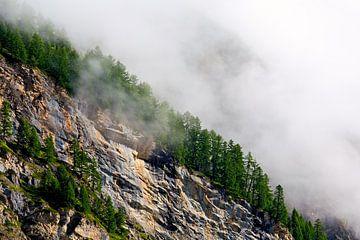 Nebel auf der Flanke von Anton de Zeeuw