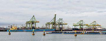 Große Massentransportschiff gefüllt mit Kohle im Hafen  von Sjoerd van der Wal