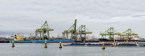 Schepen in de kolenterminal in de Mississippihaven in Rotterdam van Sjoerd van der Wal
