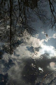 weerspiegeling  von Helene de Jongh