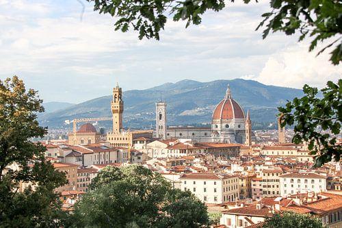 Dromerig Uitzicht over Florence