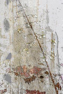 Witte bloemetjes op een ruwe achtergrond van Dominique Landau