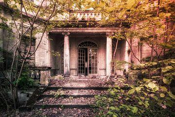 De verlaten en vervallen overwoekerde villa. van Frans Nijland