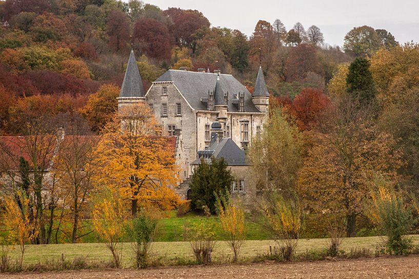 Kasteel Schaloen in Oud-Valkenburg in herfstkleuren  van John Kreukniet