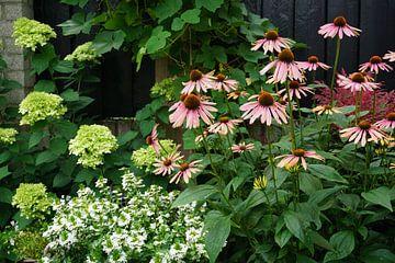Farben im Garten von Tom Poppelaars