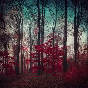 Amaze - mystical forest van Dirk Wüstenhagen