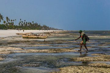 Visser op het strand van Zanzibar van Easycopters