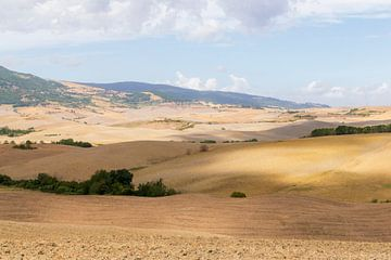 Die sanften Hügel der toskanischen Landschaft von Diane Bonnes
