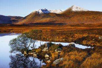 Ein Hauch von Winter im Rannoch Moor von Daniela Beyer