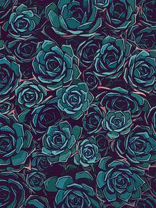 Bovenaanzicht meerdere vetplantjes - illustratie stijl - planten liefde