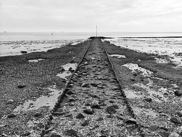Low tide sur Frank Tauran