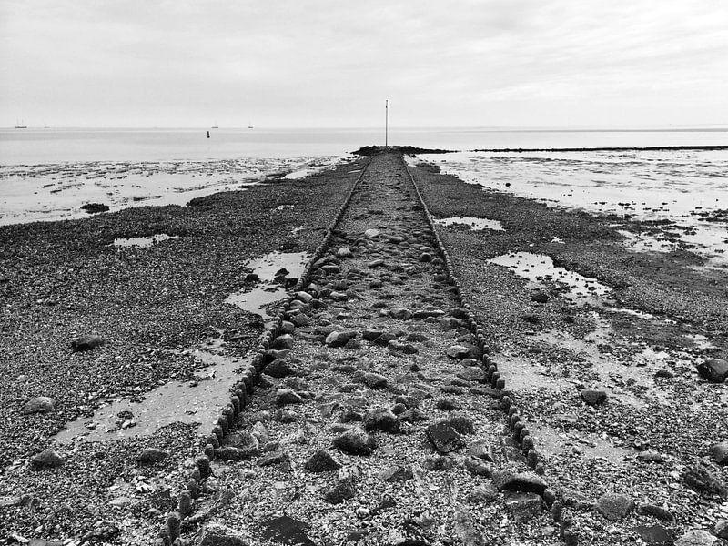 Low tide van Frank Tauran