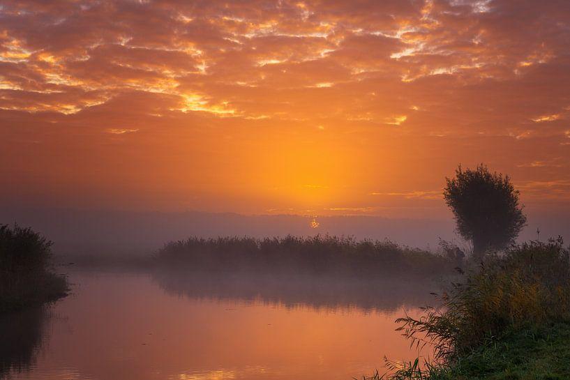 Sun vs Mist I van Sander Peters Fotografie