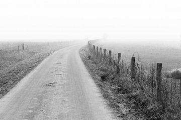 Landschap in dichte mist van
