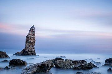 Der Schädel auf dem Playa de Portizuelo von Arina Keijzer