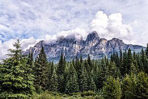 Castle Mountain ........