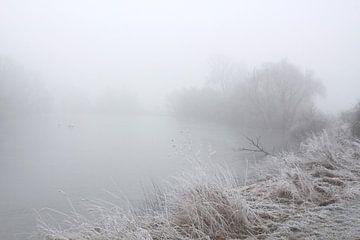 An der Saale bei Nebel und Rauhreif von Karina Baumgart