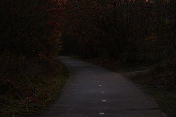 Road to Nowhere van Bram Jansen
