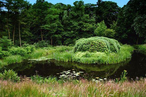 Kasteel Warmelo met natuurlijke tuin