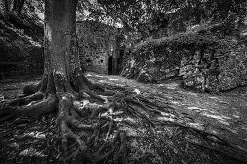 Chateau Fort de Logne van Rob Boon