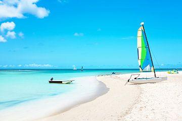 Tropisch strand op Aruba in de Caribbische Zee van
