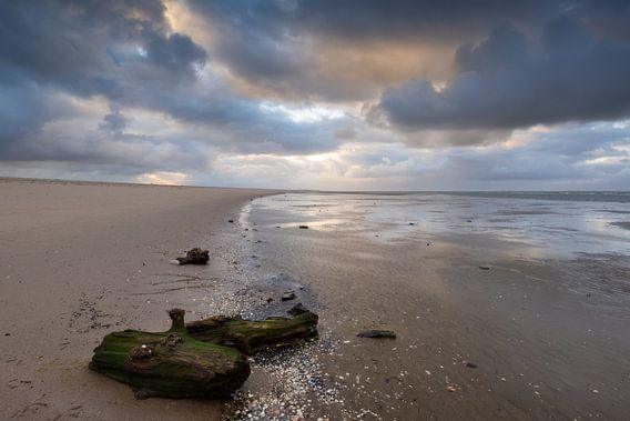 Maasvlakte 6