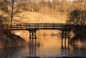 houten bruggetje over het water van Compuinfoto .