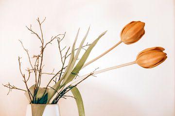 twee tulpen van Michael Schulz-Dostal