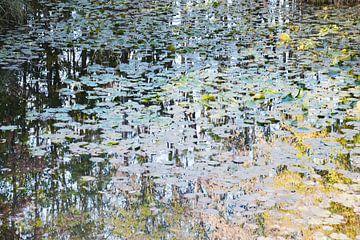 Teich malerisch von Lena Weisbek