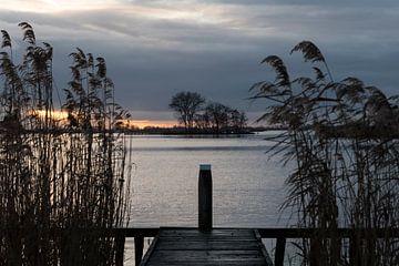 Path to... van Ineke Verbeeck