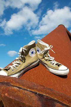 Converse All Stars sneakers in the sky van