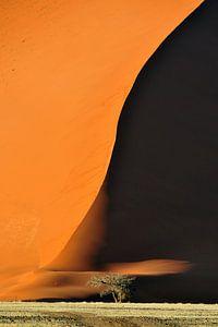 Schaduw over zandduinen in Namibie