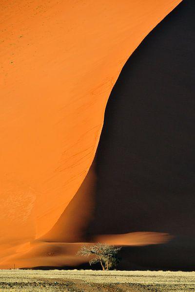Schaduw over zandduinen in Namibie van AGAMI Photo Agency