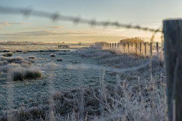 Ein winterlicher Blick über das Doove Gat bei Haastrecht von Rossum-Fotografie