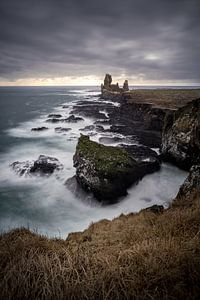 Birds and Icelandic coast.