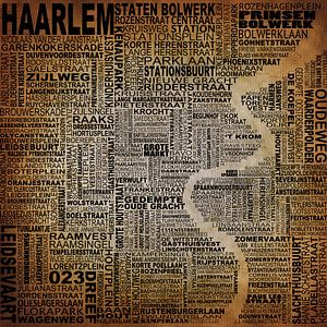 Haarlem typography van