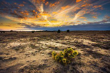 Koowijkerzand zonsondergang van Hans van den Beukel