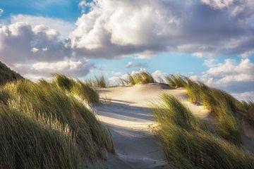 Terschelling Strand en duinen Midsland aan zee van Arjan Boer