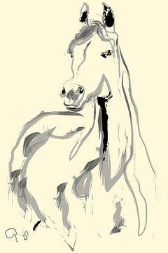 Paard Arab van Go van Kampen