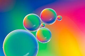 Druppels |  Regenboog kleuren van Marianne Twijnstra-Gerrits