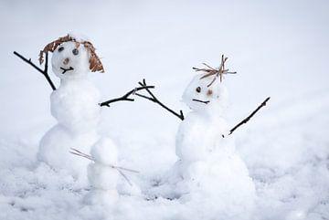 Sneeuwpopjes von